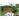 Telone di protezione per legno 180 g/m²