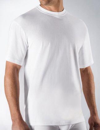 Camicia Ceceba OA Basic