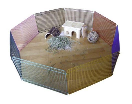 Area recintata per criceti