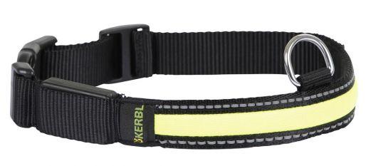 Light & Reflex Leuchthalsband